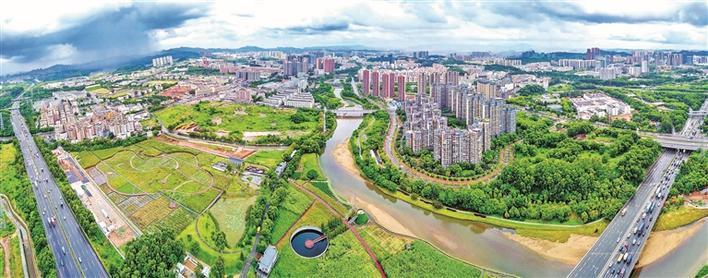龙华区以党建引领经济社会高质量发展纪实