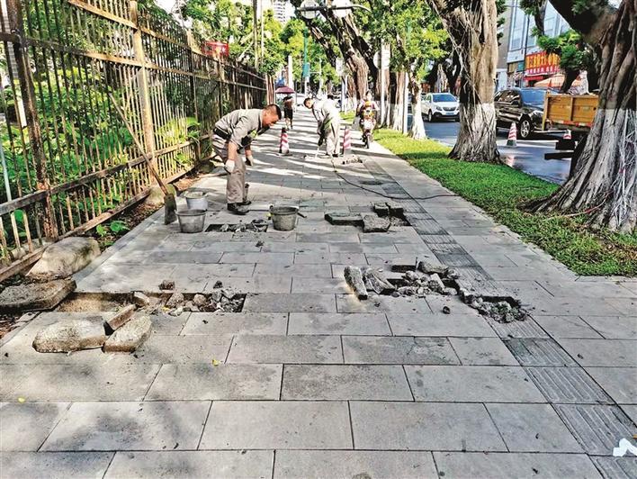市民反馈:公园路人行道破损 交通部门:及时修复部分坑洼